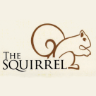 The Squirrel